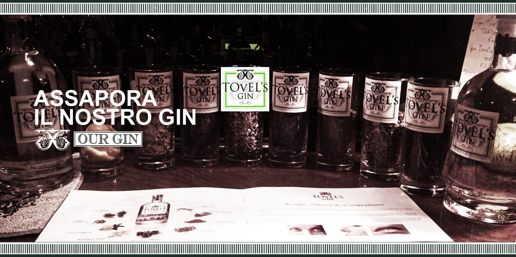 sf_tovels_gin_ourgin